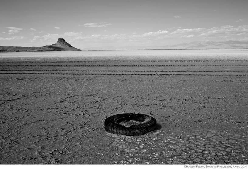 Syngenta Photography Award - Hossein Fatemi